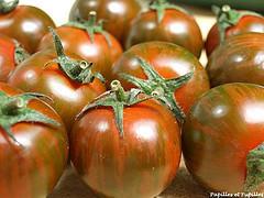tomates zébrées