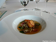 Saint Jacques au nerratous - tricholoma portensosum - Façon soupe au choux