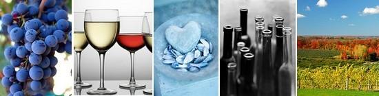 Vins & amour