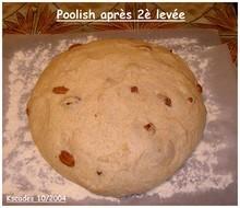 Images Papilles et Pupilles - Poolish