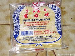 pâte won ton