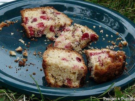 Cake aux airelles et noix de pécan