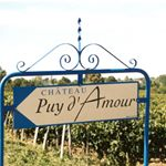 chateau_puy_damour